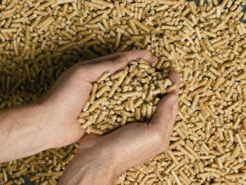 granules de bois pellets